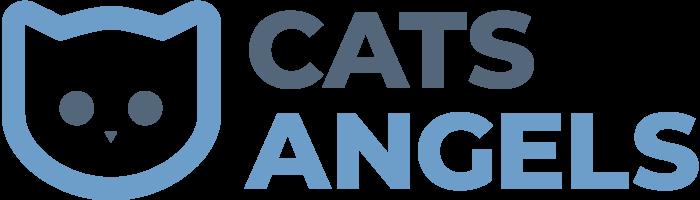 Cats-Angels - Katzensitting